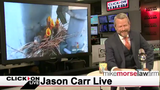 Jason Carr Live: Sea lion takes girl for a swim, woman dressed as T-rex&hellip&#x3b;