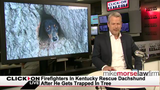 Jason Carr Live: Dachshund trapped in a tree, man mowing lawn when twister hits