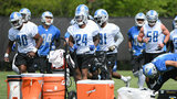 Man removed from Detroit Lions minicamp after shouting at players