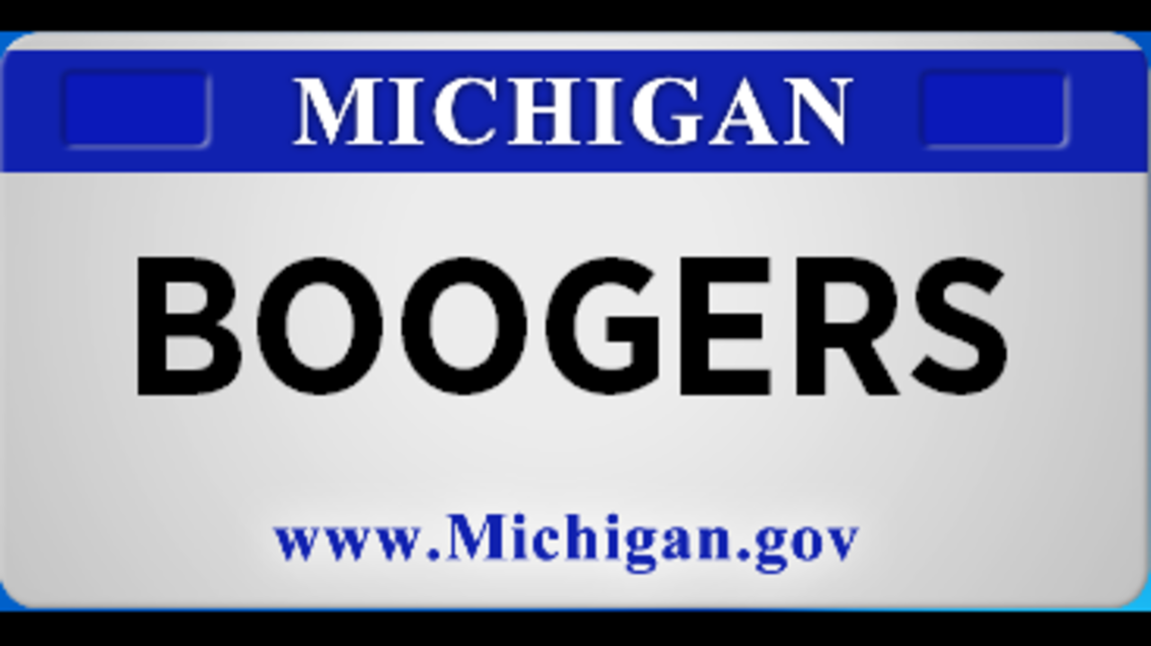 Banned license plates in Michigan