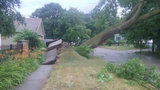 30,000 customers without power after storms, DTE says