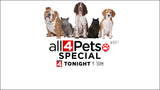 WATCH: Local 4's 'All 4 Pets' special