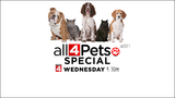 Local family welcomes fox as pet - 'All 4 Pets Special' Weds, 9:30 p.m.