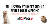 All 4 Pets: Put Your Pet In A Promo Contest