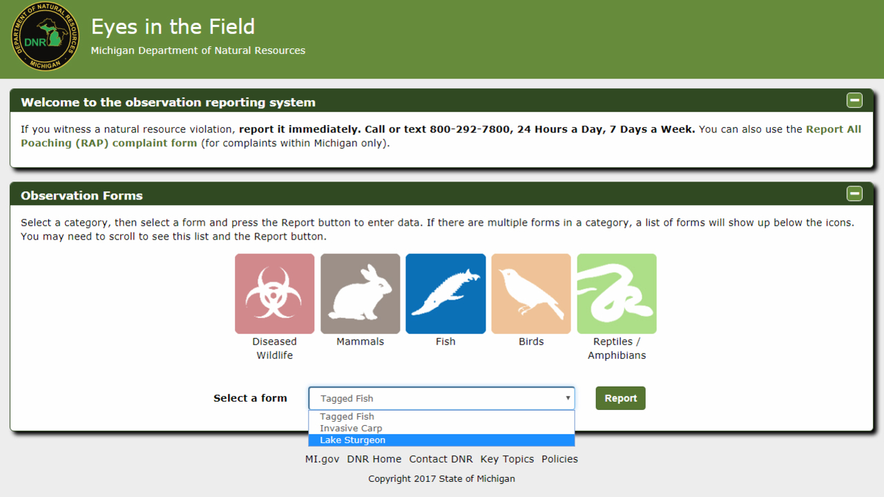 Michigan DNR introduces app to report fish, wildlife
