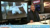 Jason Carr Live: Bear in a koi pond, flamingo gets new shoes,&hellip&#x3b;