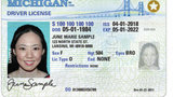 Why you may need to apply for a new Michigan license, ID card