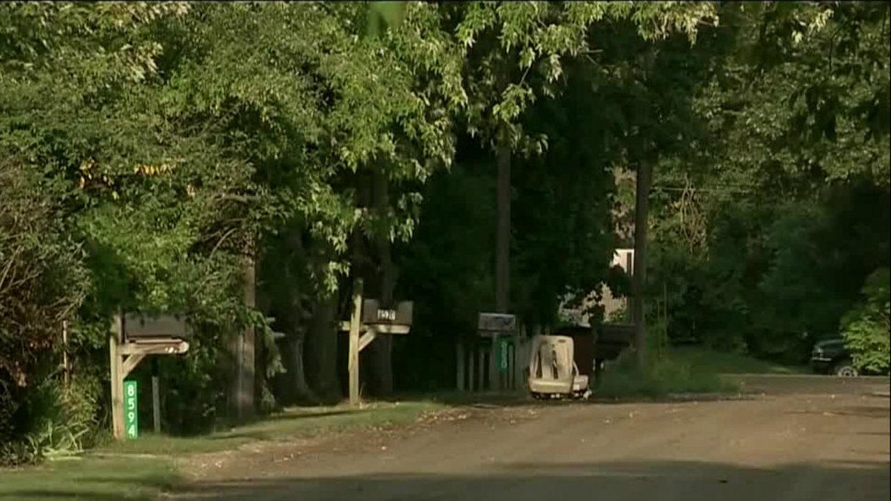 Michigan communities on high alert after reports of child predators in vans