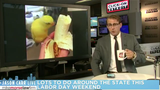 Jason Carr Live: 3D billboard in Times Square, bees and more bees, labor&hellip&#x3b;