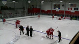 Detroit Red Wings training camp Day 1: Players prep for first season at LCA