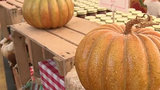 Michiganders spend first weekend of fall soaking up summer-like weather&hellip&#x3b;