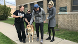 Red Wings goalie Petr Mrazek teams up with Detroit Dog Rescue to raise&hellip&#x3b;