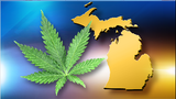 Should marijuana be legal in Michigan? 57% of voters say yes