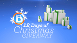 Enter to win Live in the D's 12 Days of Christmas Giveaway