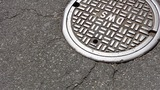 Ann Arbor Art Center opens public voting for manhole cover art