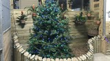 In pictures: Holiday lights at The Creature Conservancy in Ann Arbor