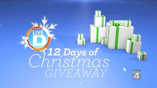12 Day's of Christmas Giveaway Rules