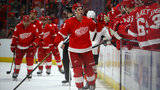 Larkin, Nielsen score in Red Wings' 2-1 win over Ducks