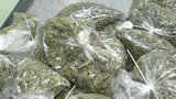 Detroit police seize at least 200 pounds of marijuana during raid on east side