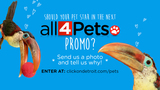 'Put Your Pet In A Promo' contest