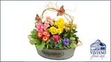 Springtime Garden Planter contest by Viviano Flower Shop rules