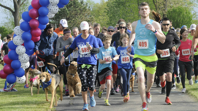 Walk, wag, run at Humane Society of Huron Valley annual fundraiser in…