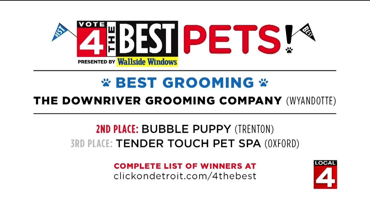 V4TB Pets Grooming Winners 2018