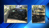 Jeep crushed under 2.5-ton tree in Harper Woods