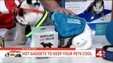 Hot gadgets to keep your pets cool