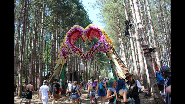 Sold-out Electric Forest Festival begins in West Michigan