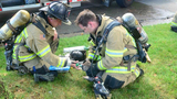 Firefighters use pet oxygen masks to treat cats after Royal Oak house fire