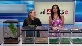 All 4 Pets: What you need to know about caring for exotic pets