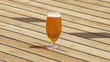 2 Michigan beers make list of best IPAs in America