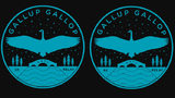 Join the Gallup Gallop 5k and Relay at Ann Arbor's Gallup Park