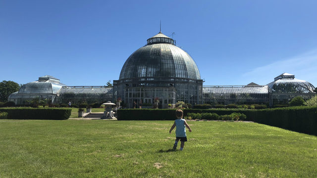 Belle Isle conservatory set to reopen after $2.5M restoration