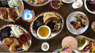 Dine in the D: Gran Castor Rules
