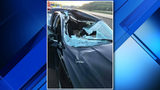 Deer goes through windshield on I-96, driver and passenger OK