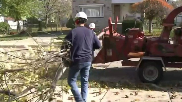 DTE, Michigan Department of Corrections launch tree trimming training…