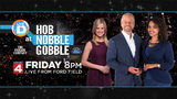 WATCH: Local 4's coverage of Hob Nobble Gobble from Ford Field