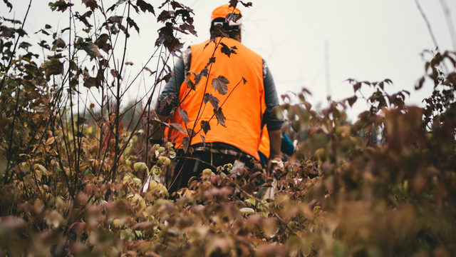 Event aimed at hunting, fishing enthusiasts kicks off Friday in Imlay City