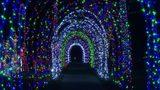 'Tunnel of Lights' on Eiffel Street in Warren