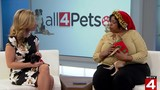 Pets of the Week: Bella and Betty Boop