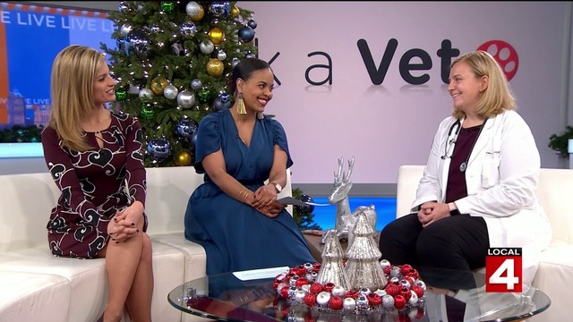How you can make it a safe holiday season for your pets