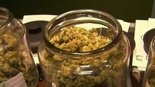 Michigan allows temporary facilities to reopen amid medical marijuana shortage