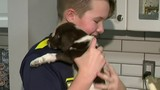 Family reunited with puppy at center of Berkley dog shelter investigation