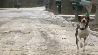 Icy dirt roads force Wayne County school district to cancel classes for&hellip&#x3b;
