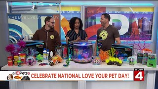 It's all about fish on National Love Your Pet day with Premier Pet Supply