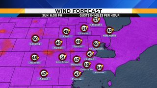 High wind warning issued for Sunday in Metro Detroit: What you need to know