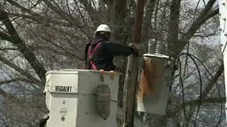 DTE, MSP, Consumers Energy prepare for Sunday's high wind warning