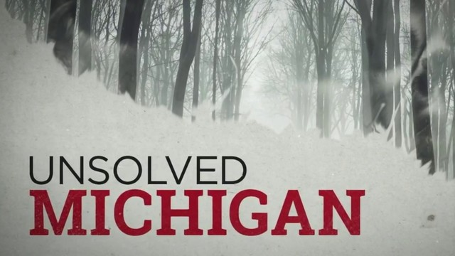 Where some of Michigan's biggest unsolved cases stand in 2019